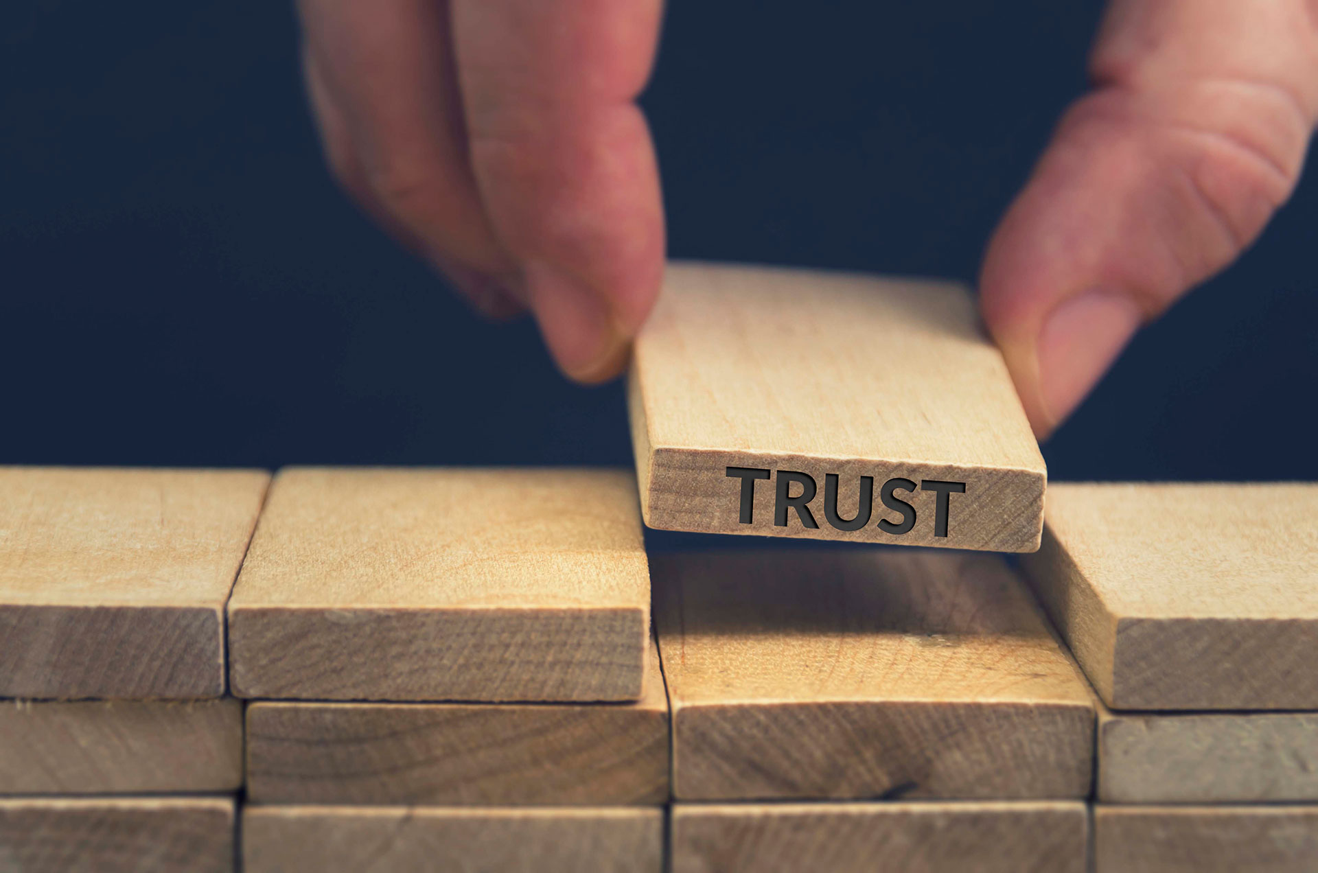 Build Trust, Improve Performance